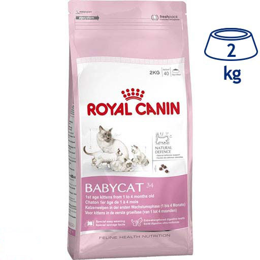 Ração para Gato Júnior 34 Royal Canin (emb. 2 kg)