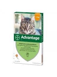 Advantage Pipetas Antiparasitárias para Gato até 4 kg (4 unidades)